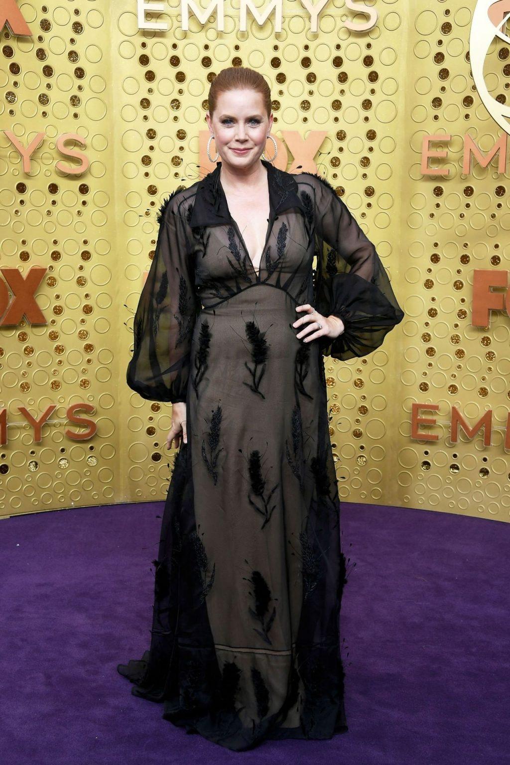 Amy Adams See-Through