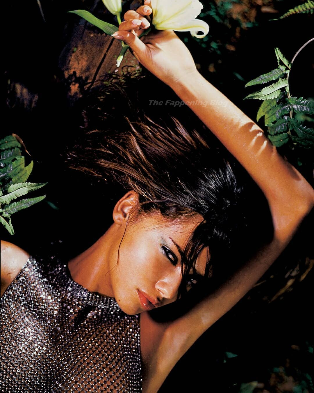 Adriana Lima See-Through (5 Photos)