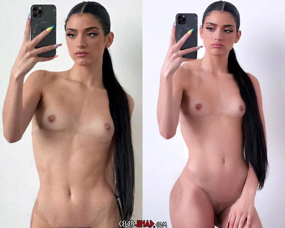 Dixie D'Amelio Fully Nude Selfies And Creampie